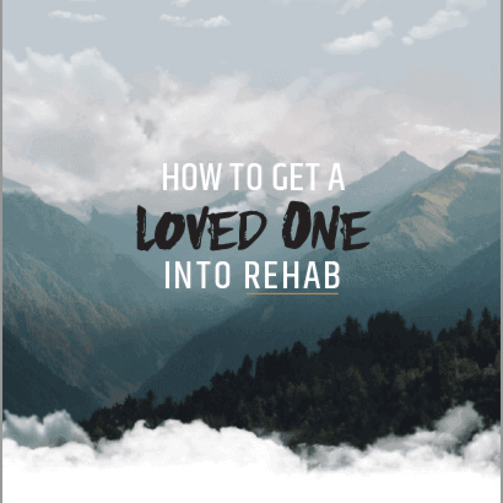 How To Get A Loved One Into Rehab Ebook