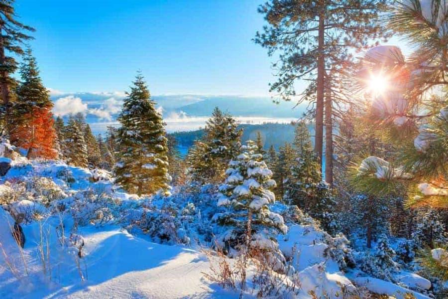 Elevate Lake Tahoe Snow
