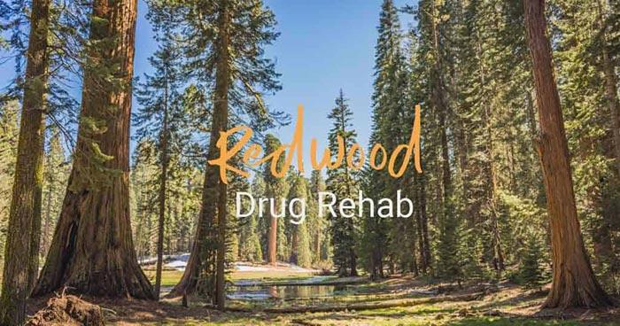 Redwood Drug Rehab